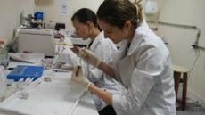 Pesquisadoras durante a realização das análises no laboratório de Biologia Molecular da UTFPR, Dois Vizinhos.