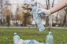 Garrafas plásticas em uma lata de lixo (Foto: Freepik)