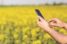 Com o aplicativo AgroRetorno, usuários podem analisar a viabilidade de projetos de investimento rural (Imagem: freepik)