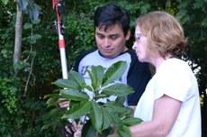 Professora Carla com um de seus alunos analisando uma das espécies do bosque