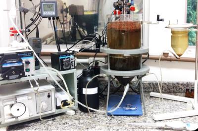 imagem do reator criado pela pesquisadora