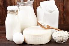 Paraná se destaca na produção de queijos (Fonte: Freepik)