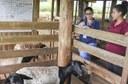 Foto de pesquisadoras que anotam observações diante de uma cabra