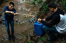 Alunos da UTFPR realizam atividade ambiental em Toledo (Foto: Reprodução/Casa de Notícias)